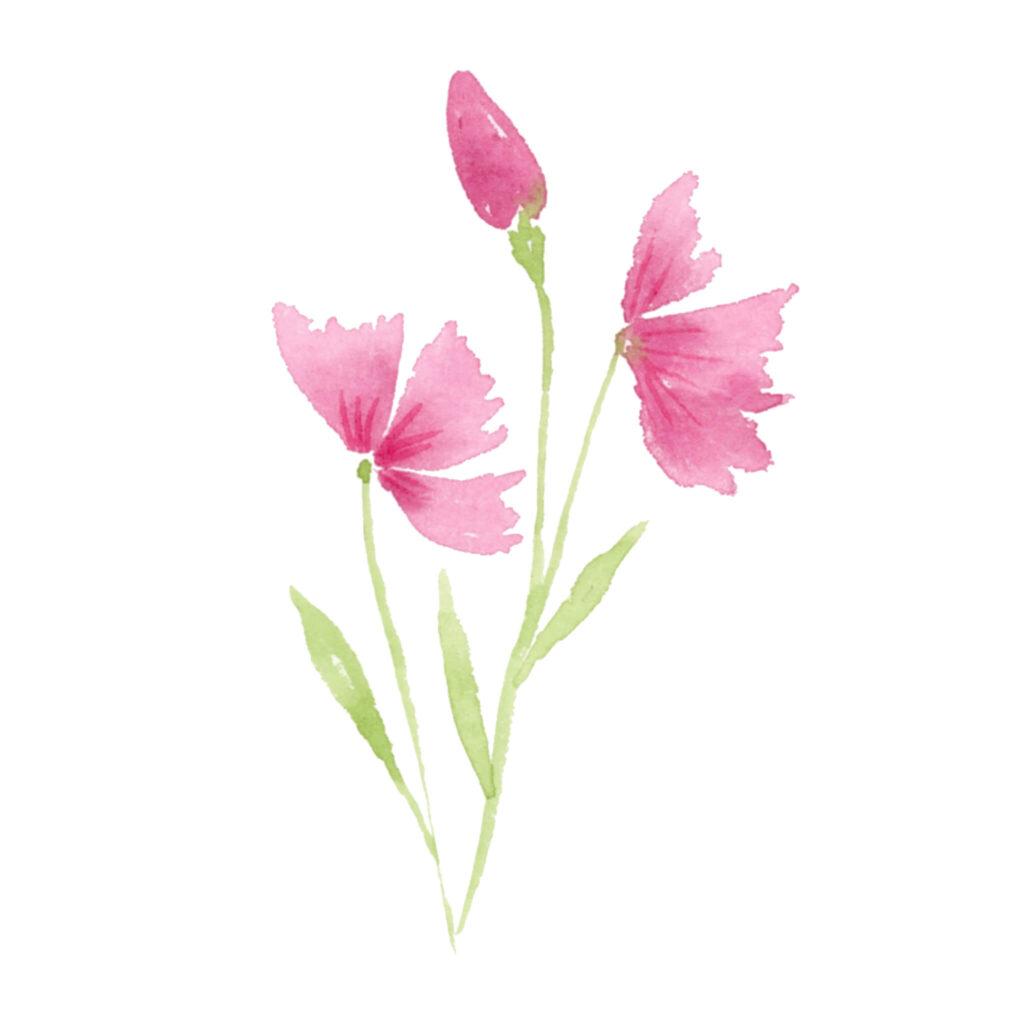 Abstrakte rosa Blumen in Aquarellfarben malen Anleitung