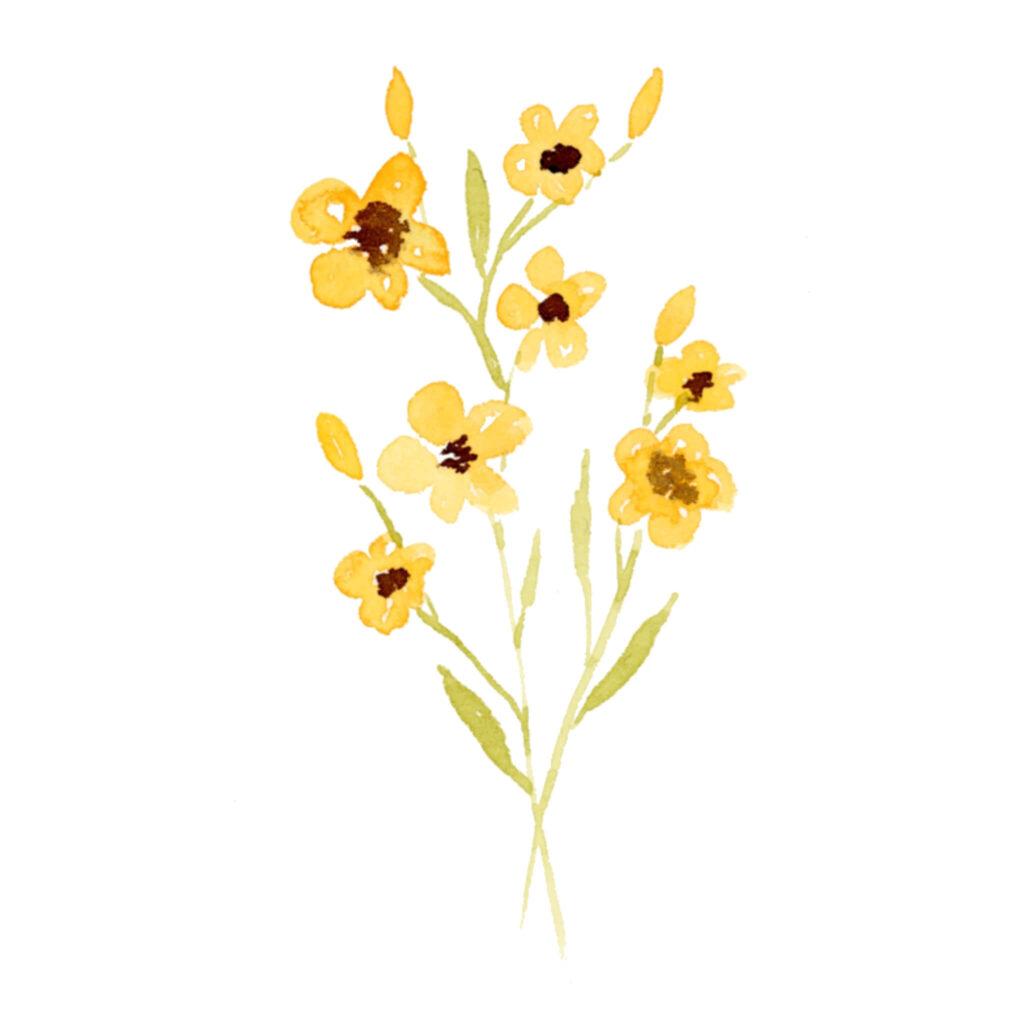 Kleine gelbe Blümchen in Aquarell Farben malen