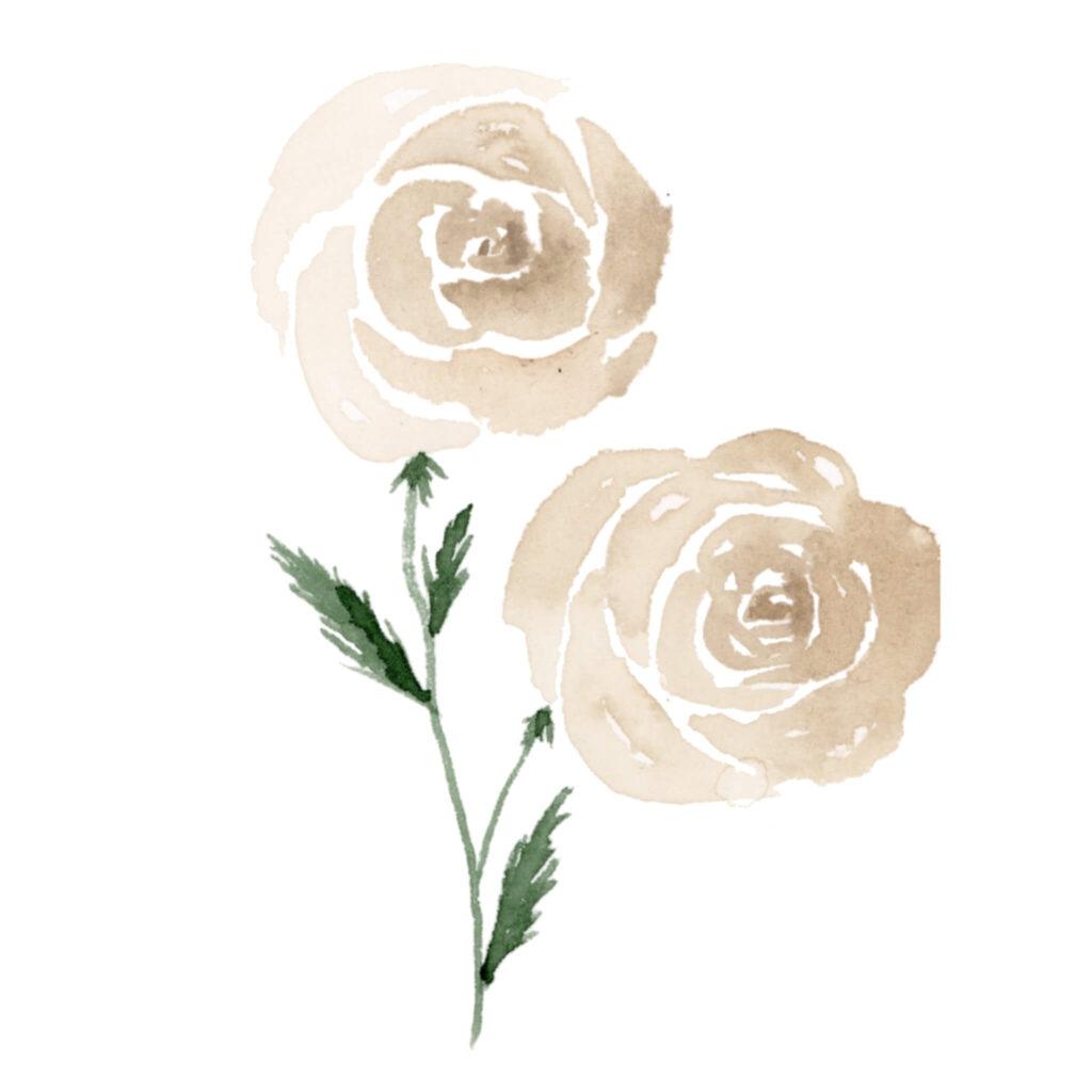 Aquarell Rose malen Anleitung